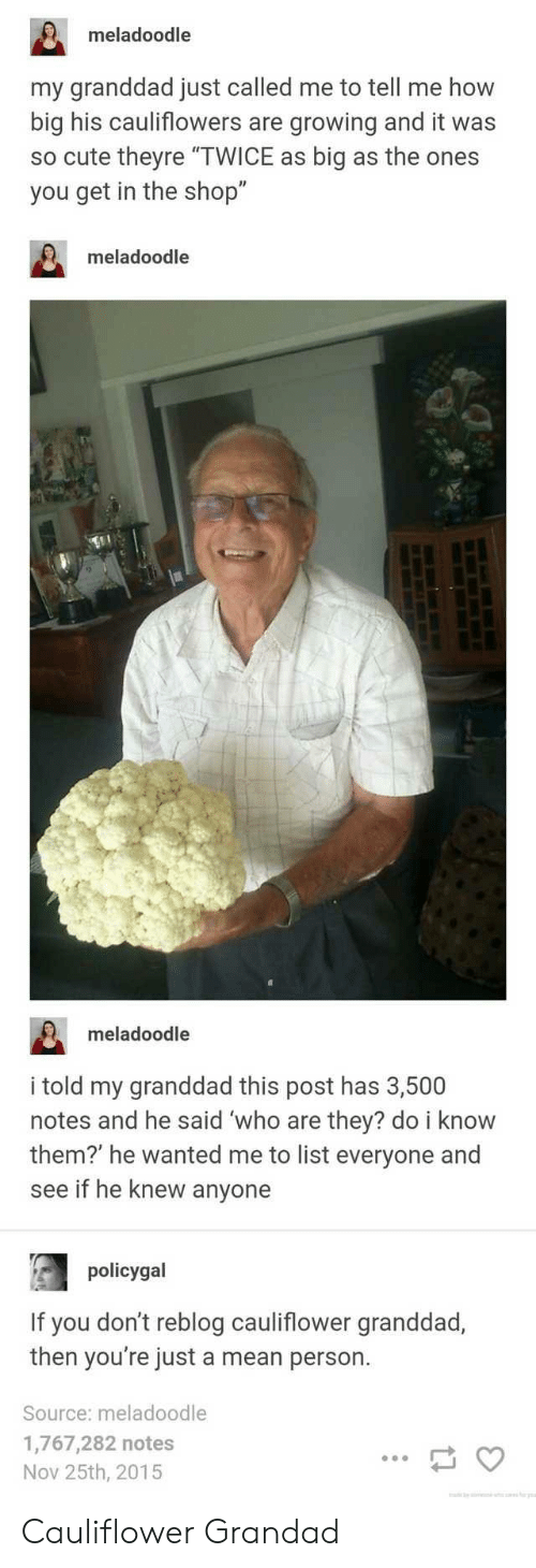 """Bilbo: meladoodle  my granddad just called me to tell me how  big his cauliflowers are growing and it was  so cute theyre """"TWICE as big as the ones  you get in the shop""""  meladoodle  meladoodle  i told my granddad this post has 3,500  notes and he said 'who are they? do i know  them?' he wanted me to list everyone and  see if he knew anyone  policygal  If you don't reblog cauliflower granddad,  then you're just a mean person.  Source: meladoodle  1,767,282 notes  Nov 25th, 2015 Cauliflower Grandad"""
