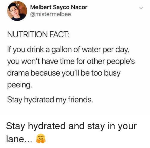 Friends, Memes, and Time: Melbert Sayco Nacor  @mistermelbee  NUTRITION FACT:  If you drink a gallon of water per day,  you won't have time for other people's  drama because you'll be too busy  peeing.  Stay hydrated my friends Stay hydrated and stay in your lane... 🤗
