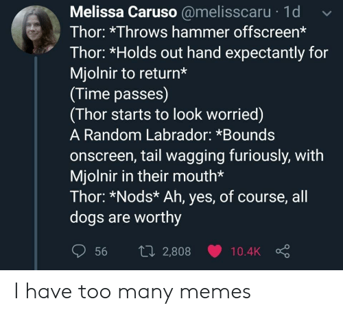 hammer: Melissa Caruso @melisscaru 1d  Thor: *Throws hammer offscreen*  Thor: *Holds out hand expectantly for  Mjolnir to return*  (Time passes)  (Thor starts to look worried)  A Random Labrador: *Bounds  onscreen, tail wagging furiously, with  Mjolnir in their mouth*  Thor: *Nods* Ah, yes, of course, all  dogs are worthy  1i2,808  56  10.4K I have too many memes
