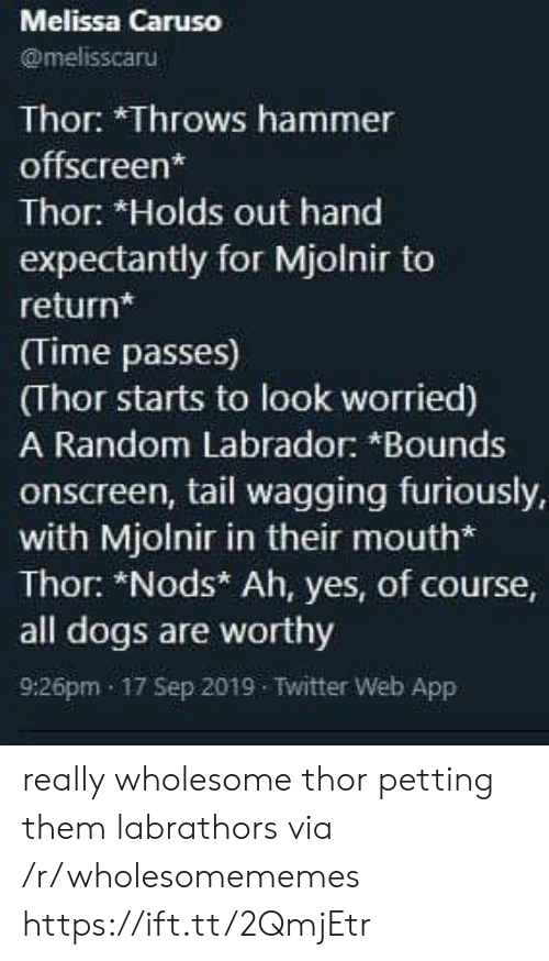 labrador: Melissa Caruso  @melisscaru  Thor: *Throws hammer  offscreen*  Thor: *Holds out hand  expectantly for Mjolnir to  return*  (Time passes)  (Thor starts to look worried)  A Random Labrador: *Bounds  onscreen, tail wagging furiously,  with Mjolnir in their mouth*  Thor: *Nods* Ah, yes, of course,  all dogs are worthy  9:26pm 17 Sep 2019 Twitter Web App really wholesome thor petting them labrathors via /r/wholesomememes https://ift.tt/2QmjEtr
