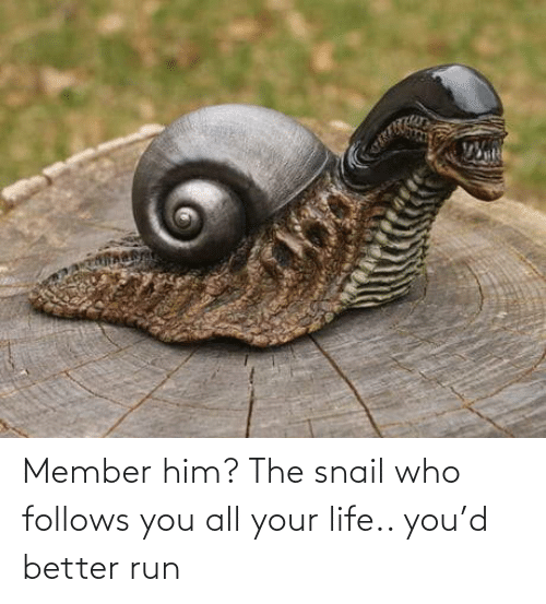 Run: Member him? The snail who follows you all your life.. you'd better run