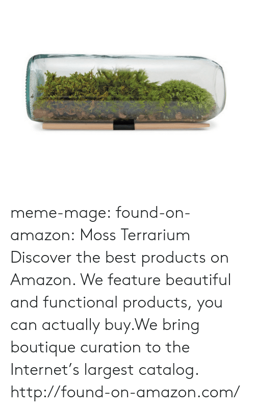 Boutique: meme-mage:  found-on-amazon:  Moss Terrarium  Discover the best products on Amazon. We feature beautiful and functional products, you can actually buy.We bring boutique curation to the Internet's largest catalog. http://found-on-amazon.com/