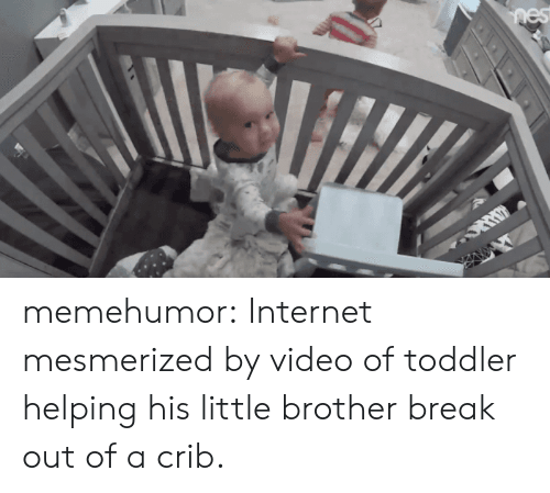 mesmerized: memehumor:  Internet mesmerized by video of toddler helping his little brother break out of a crib.