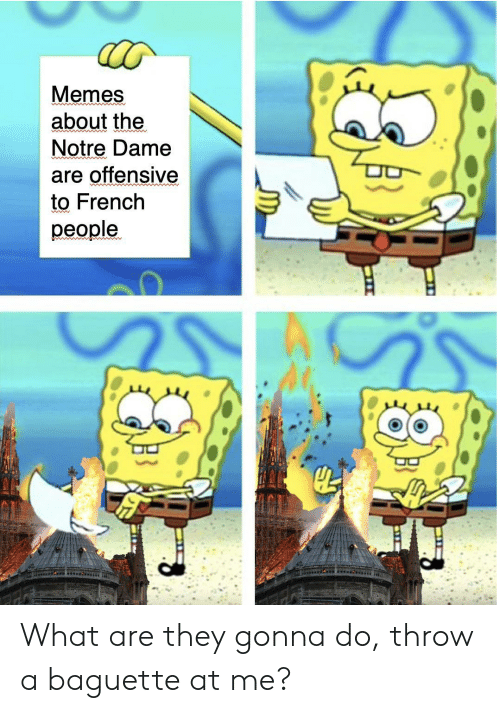 French People: Memes  about the  Notre Dame  are offensive  to French  people.  od What are they gonna do, throw a baguette at me?