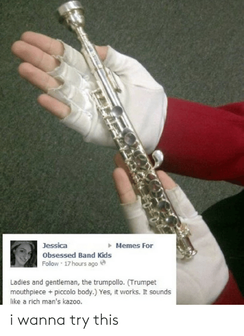Memes, Piccolo, and Kids: Memes For  Jessica  Obsessed Band Kids  Follow 17hours ago  Ladies and gentleman, the trumpollo. (Trumpet  mouthpiece + piccolo body.) Yes, it works. It sounds  like a rich man's kazoo. i wanna try this