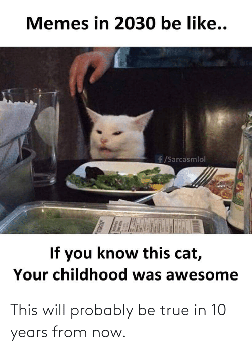 you-know-this: Memes in 2030 be like..  f/Sarcasmlol  If you know this cat,  Your childhood was awesome This will probably be true in 10 years from now.