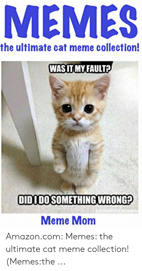 25 Best Memes About Funny Cat Memes Clean Funny Cat