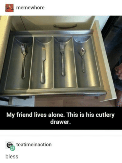 Being Alone, Friend, and This: memewhore  My friend lives alone. This is his cutlery  drawer.  teatimeinaction  bless