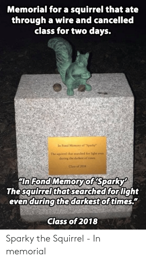 "Ate: Memorial for a squirrel that ate  through a wire and cancelled  class for two days.  In Fond Memory of Sparky""  The squirrel that searched for light even  during the darkest of times  Clas of 2018  ""In Fond Memoryof Sparky  The squirrel that searched for light  even during the darkest of times.""  Class of 2018 Sparky the Squirrel - In memorial"