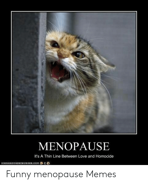 25 Best Memes About Funny Menopause Funny Menopause Memes