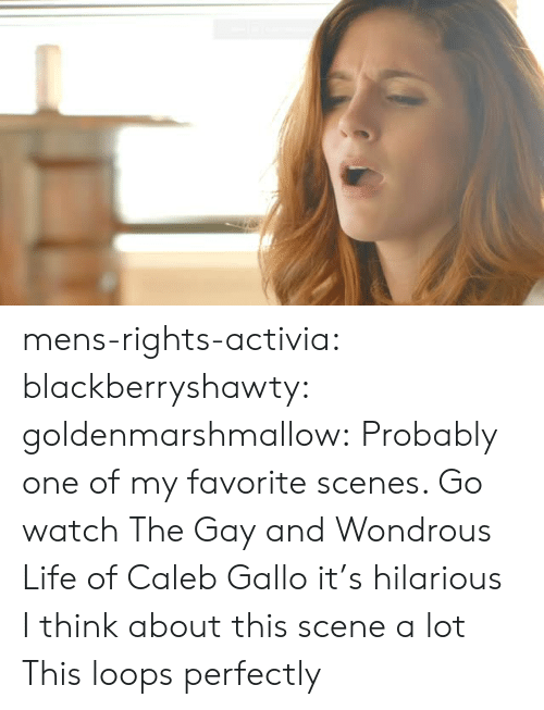 Life, Target, and Tumblr: mens-rights-activia: blackberryshawty:  goldenmarshmallow:  Probably one of my favorite scenes. Go watch The Gay and Wondrous Life of Caleb Gallo it's hilarious   I think about this scene a lot   This loops perfectly