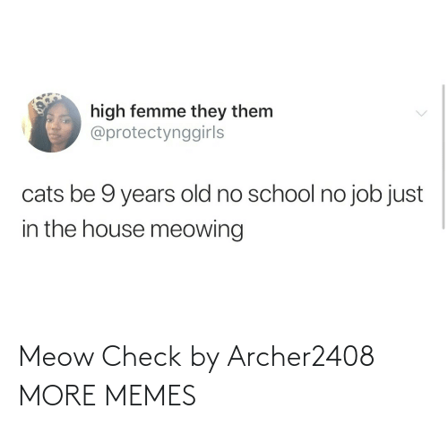 check: Meow Check by Archer2408 MORE MEMES