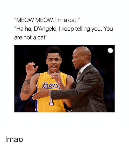 """Lmao, Memes, and 🤖: """"MEOW MEOW, I'm a cat!""""  """"Ha ha, D'Angelo, keep telling you. You  are not a cat""""  ARE lmao"""