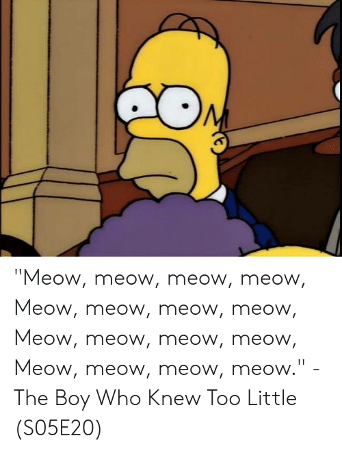 "Memes, Boy, and 🤖: ""Meow, meow, meow, meow, Meow, meow, meow, meow, Meow, meow, meow, meow, Meow, meow, meow, meow.""  - The Boy Who Knew Too Little (S05E20)"