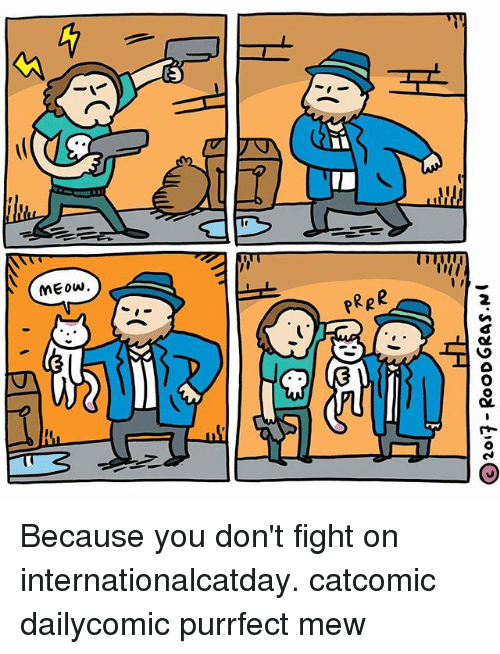 Meowe: MEow.  RpR Because you don't fight on internationalcatday. catcomic dailycomic purrfect mew