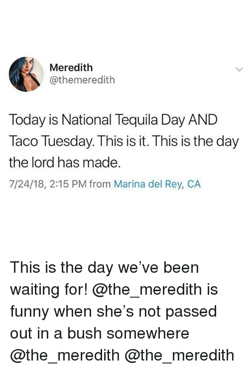 Funny, Memes, and Rey: Meredith  @themeredith  Today is National Tequila Day AND  Taco Tuesday. This is it. This is the day  the lord has made.  7/24/18, 2:15 PM from Marina del Rey, CA This is the day we've been waiting for! @the_meredith is funny when she's not passed out in a bush somewhere @the_meredith @the_meredith