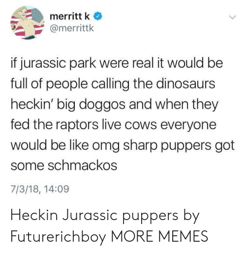 Heckin: merritt k  @merrittk  if jurassic park were real it would be  full of people calling the dinosaurs  heckin' big doggos and when they  fed the raptors live cows everyone  would be like omg sharp puppers got  some schmackos  7/3/18, 14:09 Heckin Jurassic puppers by Futurerichboy MORE MEMES