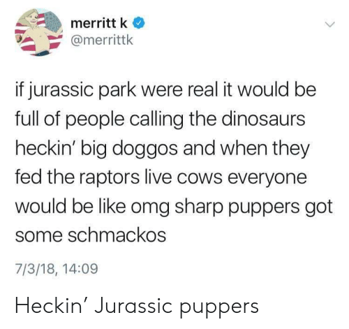 jurassic: merritt k  @merrittk  if jurassic park were real it would be  full of people calling the dinosaurs  heckin' big doggos and when they  fed the raptors live cows everyone  would be like omg sharp puppers got  some schmackos  7/3/18, 14:09 Heckin' Jurassic puppers