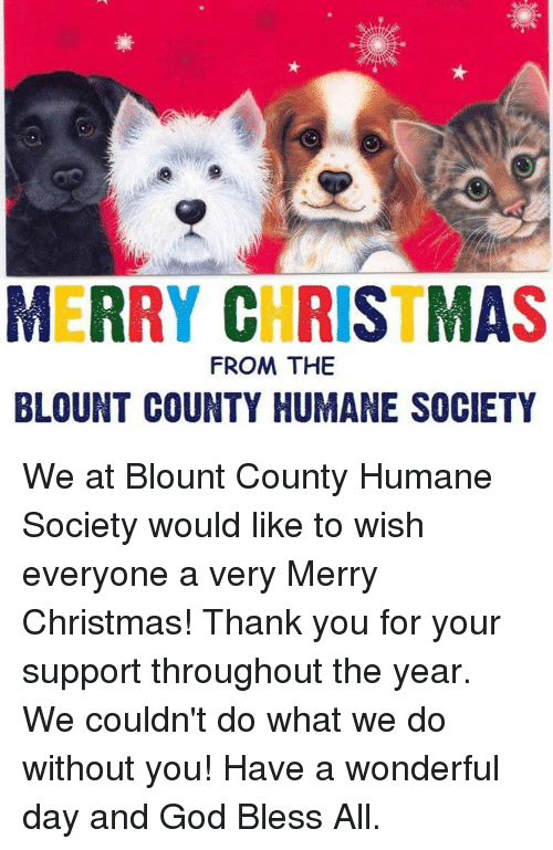 Merry Christmas From The Blount County Humane Society We At Blount