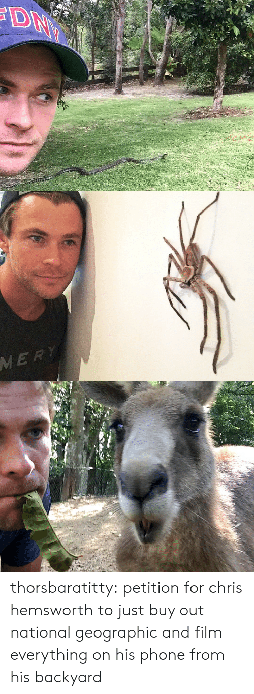 Chris Hemsworth: MERY thorsbaratitty: petition for chris hemsworth to just buy out national geographic and film everything on his phone from his backyard