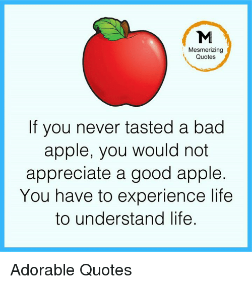 Memes, 🤖, and Mesmer: Mesmerizing  Quotes  If you never tasted a bad  apple, you would not  appreciate a good apple.  You have to experience life  to understand life Adorable Quotes
