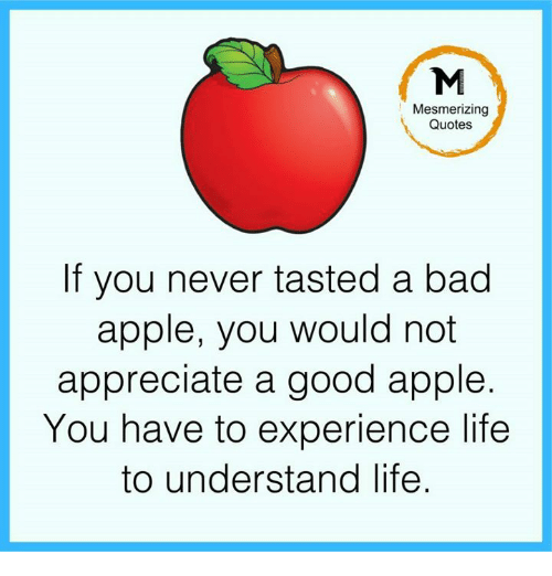 Taste A: Mesmerizing  Quotes  If you never tasted a bad  apple, you would not  appreciate a good apple.  You have to experience life  to understand life