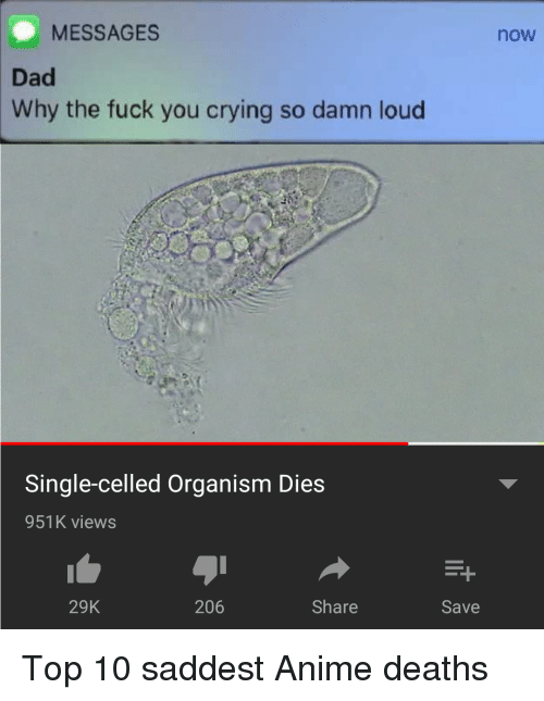 organism: MESSAGES  now  Dad  Why the fuck you crying so damn loud  Single-celled Organism Dies  951K views  29K  206  Share  Save Top 10 saddest Anime deaths