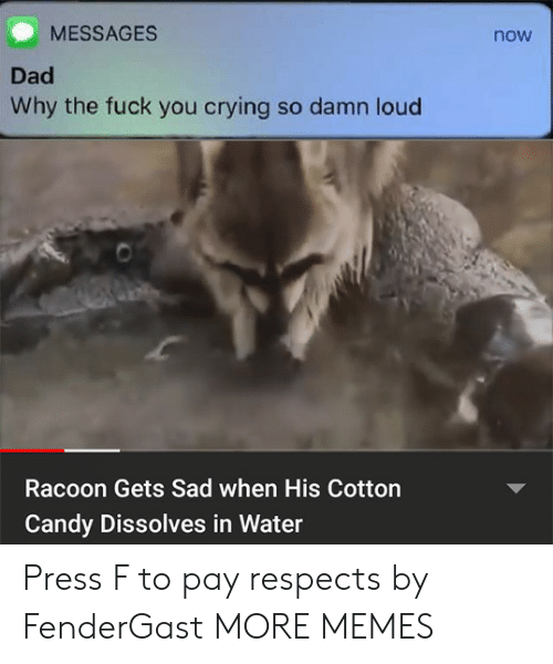 Candy, Crying, and Dad: MESSAGES  now  Dad  Why the fuck you crying so damn loud  Racoon Gets Sad when His Cotton  Candy Dissolves in Water Press F to pay respects by FenderGast MORE MEMES