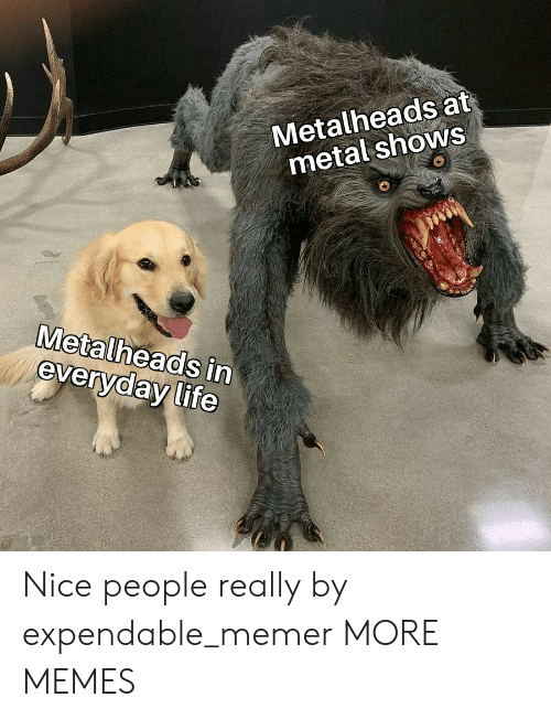 Nice People: Metalheads at  metal shows  Metalheads in  everyday life Nice people really by expendable_memer MORE MEMES