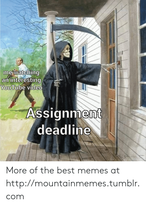 Youtube Video: mewatching  an interesting  YouTube video  Assignment  deadline More of the best memes at http://mountainmemes.tumblr.com