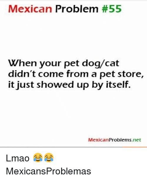 Lmao, Memes, and Mexican: Mexican Problem #55  When your pet dog/cat  didn't come from a pet store,  it just showed up by itself.  MexicanProblems.net Lmao 😂😂 MexicansProblemas