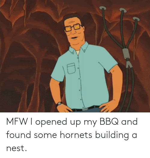 Nest: MFW I opened up my BBQ and found some hornets building a nest.