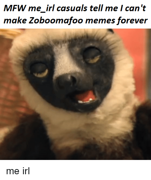 mfw me irl casuals tell me i can t make zoboomafoo memes forever me