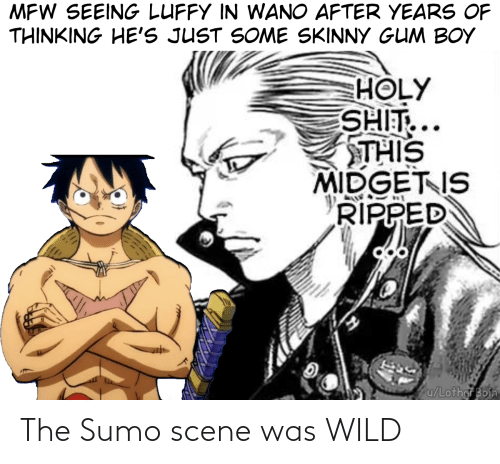 sumo: MFW SEEING LUFFY IN WANO AFTER YEARS OF  THINKING HE'S JUST SOME SKINNY GUM BOY  HOLY  SHIT...  THIS  MIDGET IS  RIPPED  u/Lothar Boin The Sumo scene was WILD