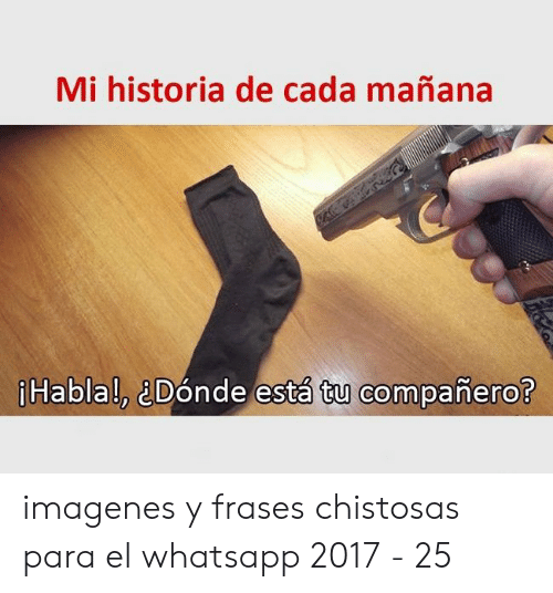 25 Best Memes About Frases Chistosas Frases Chistosas