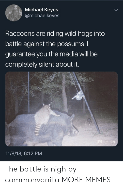 Possums: Michael Keyes  @michaelkeyes  Raccoons are riding wild hogs into  battle against the possums.  guarantee you the media will be  completely silent about it.  14  11/8/18, 6:12 PM The battle is nigh by commonvanilla MORE MEMES