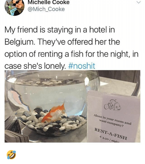 renting: Michelle Cooke  @Mich_Cooke  My friend is staying in a hotel in  Belgium. They've offered her the  option of renting a fish for the night, in  case she's lonely. #noshit  Alone in your room and  want company?  RENT-A-FISH  3.50/ nig. 🤣