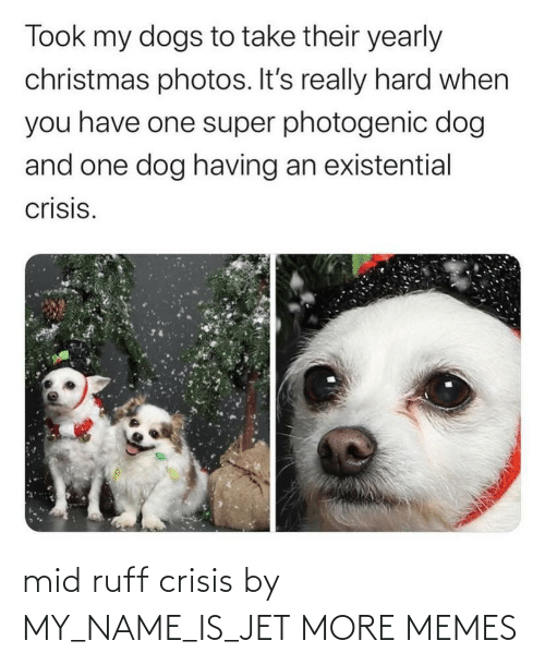 crisis: mid ruff crisis by MY_NAME_IS_JET MORE MEMES