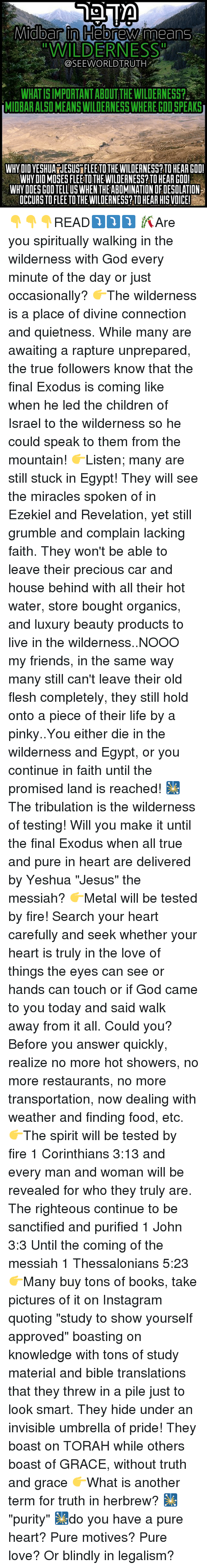 "Memes, 🤖, and Answers: Midbar in HebreNWAmeanss  ""WILDERNESS  SEEWORLDTRUTH  WHATISIMPORTANTABOUT THE WILDERNESS?  IMIDBAR ALSOMEANS WILDERNESS WHEREGOD SPEAKS  WHYDID YESHUANESUSIFLEETOTHEWILDERNESS? TO HEAR CODI  WHYDIDMISESFLEETOTHEWILDERNESS? TOHEARGODI  WHY DOESGDOTELLUSWHEN THEABOMINATION DFDESDLATION  DCCURSTOFLEE TO THE WILDERNESS? TO HEARHISVOICEI 👇👇👇READ⤵⤵⤵ 🎋Are you spiritually walking in the wilderness with God every minute of the day or just occasionally? 👉The wilderness is a place of divine connection and quietness. While many are awaiting a rapture unprepared, the true followers know that the final Exodus is coming like when he led the children of Israel to the wilderness so he could speak to them from the mountain! 👉Listen; many are still stuck in Egypt! They will see the miracles spoken of in Ezekiel and Revelation, yet still grumble and complain lacking faith. They won't be able to leave their precious car and house behind with all their hot water, store bought organics, and luxury beauty products to live in the wilderness..NOOO my friends, in the same way many still can't leave their old flesh completely, they still hold onto a piece of their life by a pinky..You either die in the wilderness and Egypt, or you continue in faith until the promised land is reached! 🎇The tribulation is the wilderness of testing! Will you make it until the final Exodus when all true and pure in heart are delivered by Yeshua ""Jesus"" the messiah? 👉Metal will be tested by fire! Search your heart carefully and seek whether your heart is truly in the love of things the eyes can see or hands can touch or if God came to you today and said walk away from it all. Could you? Before you answer quickly, realize no more hot showers, no more restaurants, no more transportation, now dealing with weather and finding food, etc. 👉The spirit will be tested by fire 1 Corinthians 3:13 and every man and woman will be revealed for who they truly are. The righteous continue to be sanctified and purified 1 John 3:3 Until the coming of the messiah 1 Thessalonians 5:23 👉Many buy tons of books, take pictures of it on Instagram quoting ""study to show yourself approved"" boasting on knowledge with tons of study material and bible translations that they threw in a pile just to look smart. They hide under an invisible umbrella of pride! They boast on TORAH while others boast of GRACE, without truth and grace 👉What is another term for truth in herbrew? 🎇""purity"" 🎇do you have a pure heart? Pure motives? Pure love? Or blindly in legalism?"