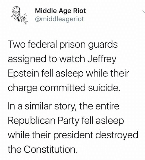 middle age: Middle Age Riot  @middleageriot  Two federal prison guards  assigned to watch Jeffrey  Epstein fell asleep while their  charge committed suicide.  In a similar story, the entire  Republican Party fell asleep  while their president destroyed  the Constitution