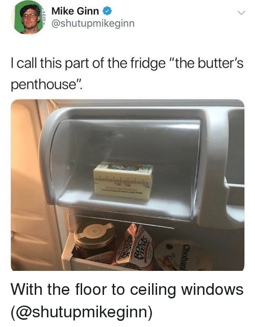 """Funny, Windows, and Fridge: Mike Ginn  @shutupmikeginn  I call this part of the fridge """"the butter's  penthouse"""". With the floor to ceiling windows (@shutupmikeginn)"""