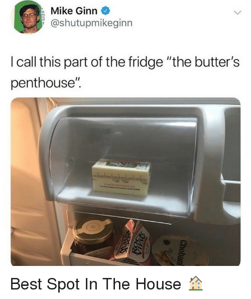 """Memes, Best, and House: Mike Ginn  @shutupmikeginn  I call this part of the fridge """"the butter's  penthouse"""". Best Spot In The House 🏠"""