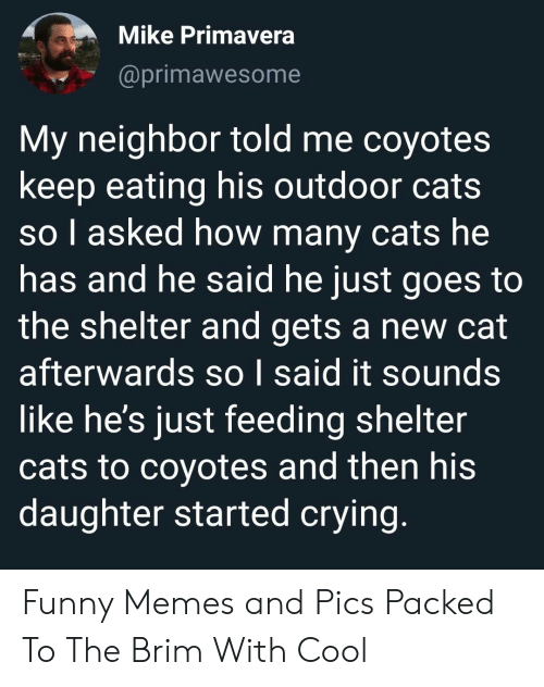 feeding: Mike Primavera  @primawesome  My neighbor told me coyotes  keep eating his outdoor cats  so l asked how many cats he  has and he said he just goes to  the shelter and gets a new cat  afterwards so I said it sounds  like he's just feeding shelter  cats to coyotes and then his  daughter started crying. Funny Memes and Pics Packed To The Brim With Cool