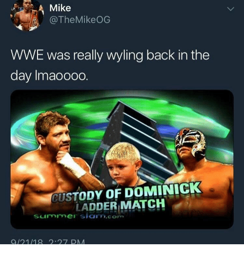 World Wrestling Entertainment, Summer, and Match: Mike  @TheMikeOG  WWE was really wyling back in the  day Imaooo0.  CUSTODY OF DOMINICK  LADDER MATCH  summer slam.com  9/21/18 .27 DA