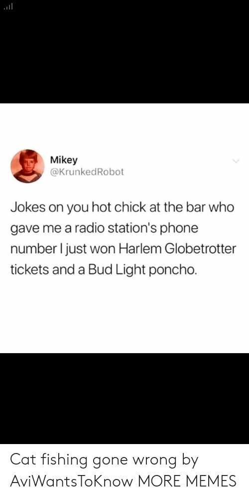 Bud Light: Mikey  @KrunkedRobot  you hot chick at the bar who  gave me a radio station's phone  number I just won Harlem Globetrotter  tickets and a Bud Light poncho. Cat fishing gone wrong by AviWantsToKnow MORE MEMES