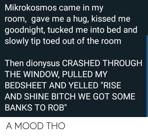 "Bitch, Mood, and Banks: Mikrokosmos came in my  room, gave me a hug, kissed me  goodnight, tucked me into bed and  slowly tip toed out of the room  Then dionysus CRASHED THROUGH  THE WINDOW, PULLED MY  BEDSHEET AND YELLED ""RISE  AND SHINE BITCH WE GOT SOME  BANKS TO ROB"" A MOOD THO"