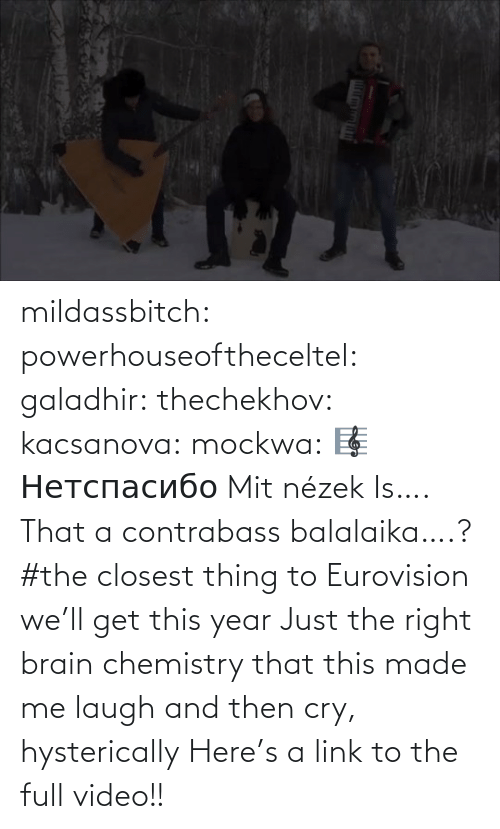 cry: mildassbitch: powerhouseoftheceltel:  galadhir:  thechekhov:  kacsanova:  mockwa:    🎼  Нетспасибо  Mit nézek    Is…. That a contrabass balalaika….?    #the closest thing to Eurovision we'll get this year    Just the right brain chemistry that this made me laugh and then cry, hysterically    Here's a link to the full video!!