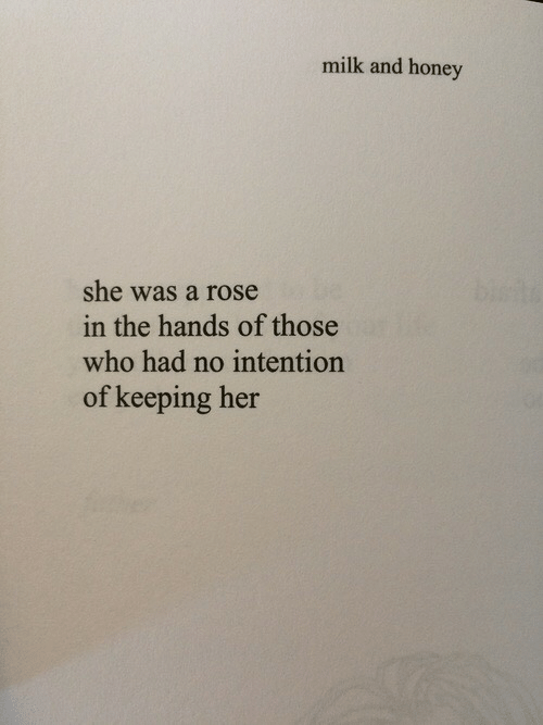 A Rose: milk and honey  she was a rose  the hands of those  who had no intention  of keeping her  in