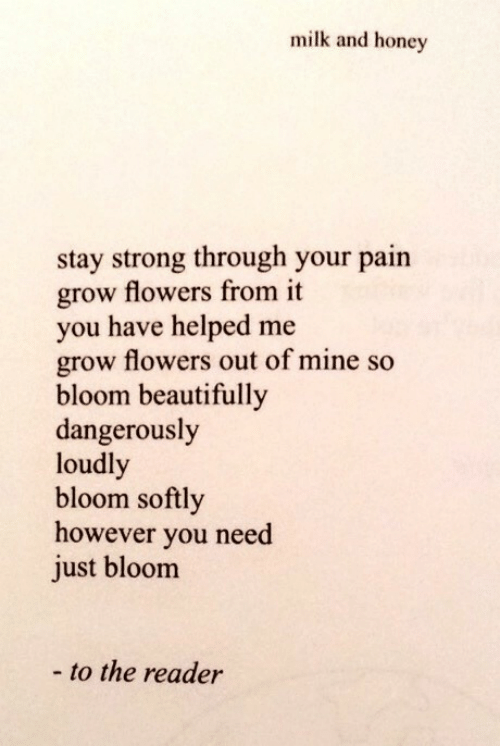 bloom: milk and honey  stay strong through your pain  grow flowers from it  you have helped me  grow flowers out of mine so  bloom beautifully  dangerously  loudl  bloom softly  however you need  just bloom  - to the reader