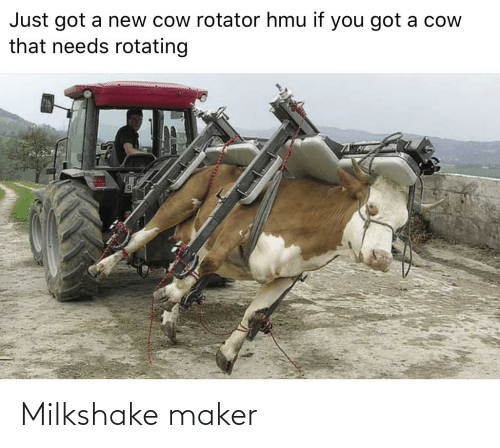 maker: Milkshake maker
